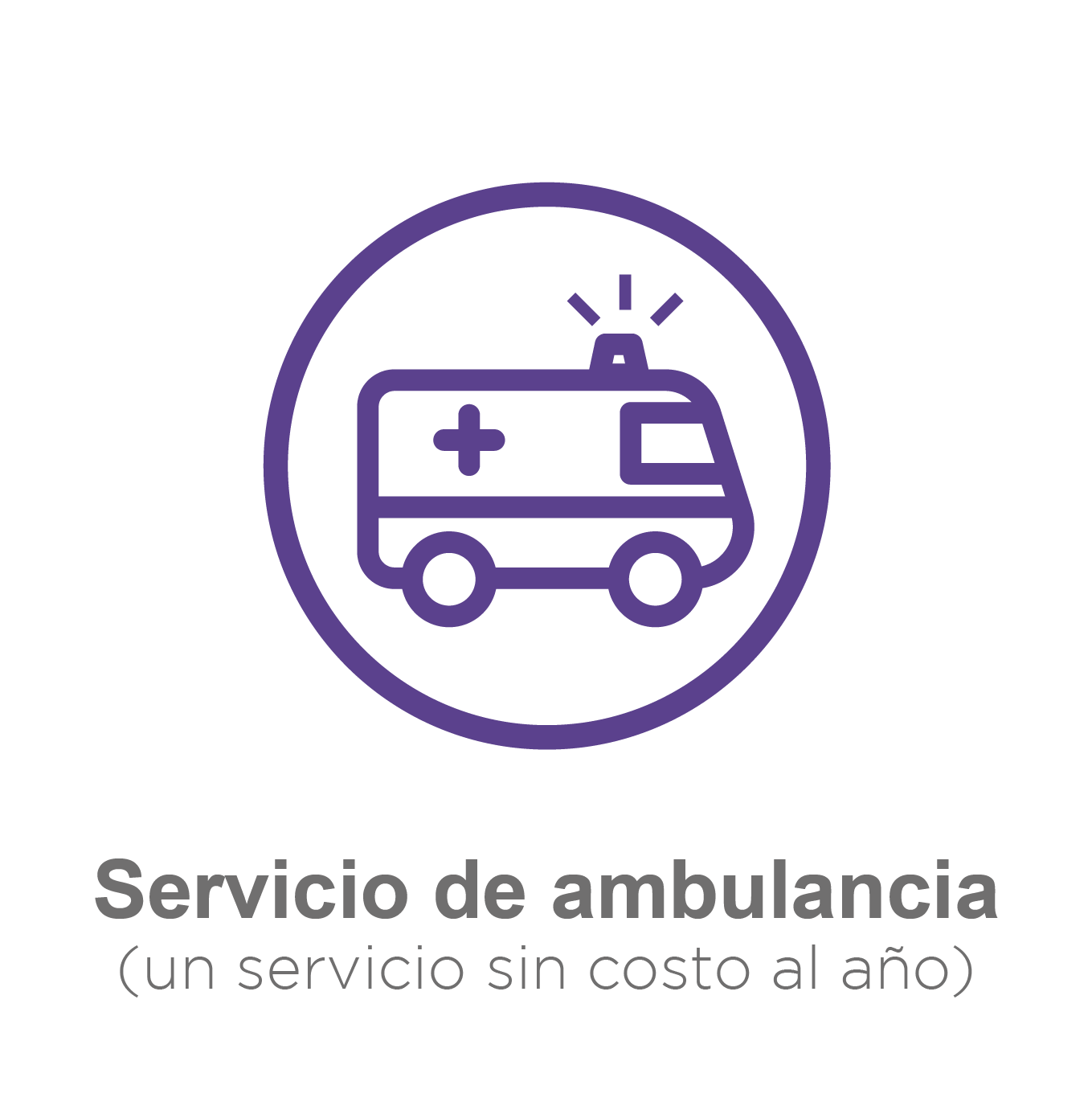 ambulacia gratis-08